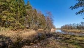 Bøtø_naturpark_2020-13-of-20