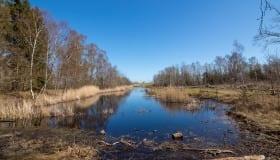 Bøtø_naturpark_2020-14-of-20