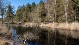 Bøtø_naturpark_2020-16-of-20