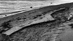 Ved Bregninge strand