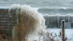 Ishuset-faxeladeplads-17032018-12