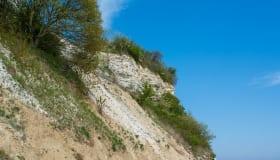 Holtug kridtbrud