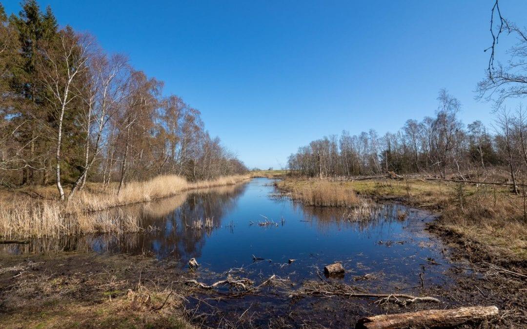 Bøtø naturpark 9. april 2020