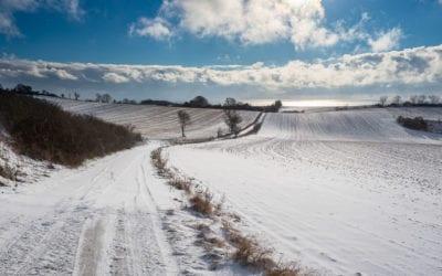 Vinter på Møn